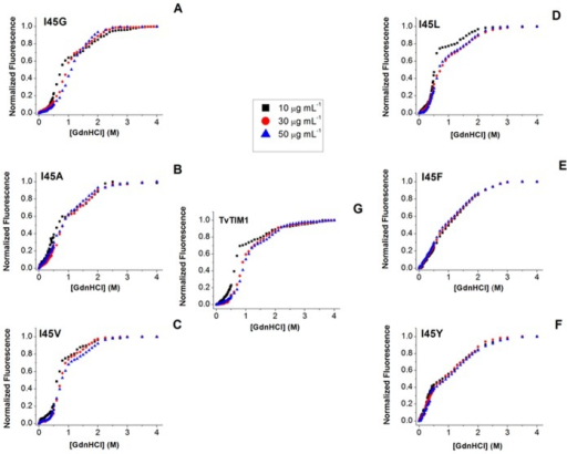 GdnHCl-induced denaturation profiles of TvTIM1 and mutants at residue 45, as measured by intrinsic fluorescence emission.(A) I45G, (B) I45A, (C) I45V, (D) I45L, (E) I45F, (F) I45Y and (G) Wild-type TvTIM1. Protein concentration was 10 (black squares), 30 (red circles) or 50 (blue triangles) μg mL-1 in 50 mM Tris-HCl pH 7.4 and 10 mM NaCl, at 25°C. Samples were excited at 280 nm and the data have been normalized for ease of comparison.
