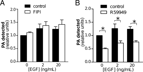 EGF treatment does not affect the reduction of PA levels due to inhibition of DGK. BSC-1 cells were treated with either (A) the PLD inhibitor FIPI (750 nM) or (B) the DGK inhibitor R59949 (30 μM) or left untreated (0.1% DMSO vehicle, control) for 20 min as indicated and then stimulated or not with EGF, as indicated for 5 min. Cells were then immediately subject to extraction of lipids and determination of cellular PA content. Shown are the means ± SE of six independent experiments. *p < 0.05.