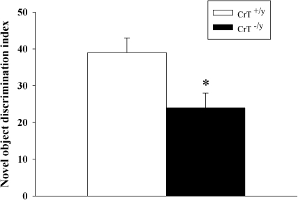 CrT−/y mice show deficits in object recognition memory.The novel object recognition test was conducted 1 h following familiarization. The novel object discrimination index was determined by subtracting the percent time with the familiar object from the percent time with the novel object. Data are Mean ± SEM. *P<0.05, n = 16/genotype.