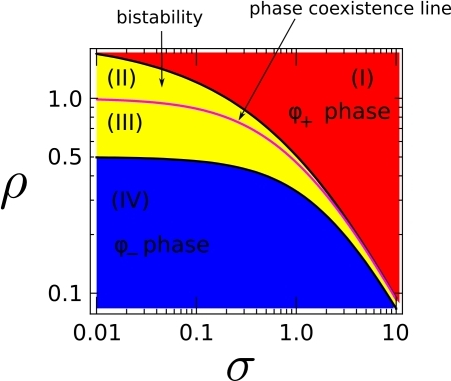 Bistability region, yellow region (II)-(III), as a function of the level of external renormalized stimulation  for . The purple line corresponds to phase coexistence (polarization) and is an attractor for the polarization dynamics. The two stable domains, blue (IV) and red (I), correspond to the two  and  stable phases.