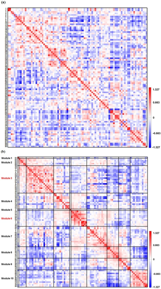 The mean functional connectivity across all participants.(a) The mean 90  90 correlation matrix across all participants. The anatomical locations of 90 ROIs are listed in the Table S1. The warm colors represent the positive correlations whereas the cool colors represent the negative correlations between ROIs. (b) The modular structure of brain functional connectivity across all participants. This modular pattern is obtained by reordering regions in the mean correlation matrix according to maximizing the strength of connectivity close to the main diagonal of the matrix. Module 6 consisted of 3 striatal regions and 8 thalamus subregions forming the striatal-thalamic circuit. Module 3 consisted of 9 medial frontal regions, 1 temporal region, 7 parietal regions, 1 posterior cingulate cortex and 1 occipital region forming the DMN. The details of the modular structure are listed in Table S2.