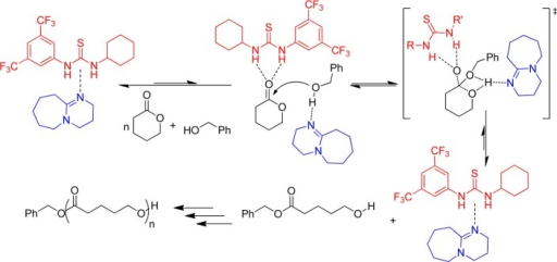 Proposed Cocatalyst Binding Mechanism for the ROP of VL