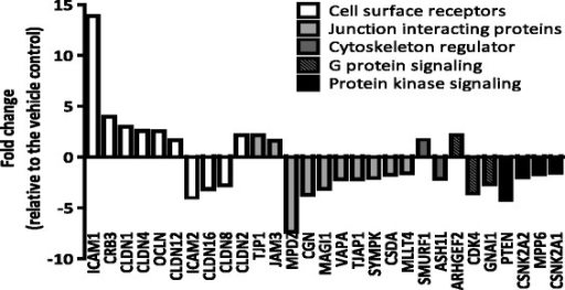 Expression changes of TJ-related genes in cultures exposed basolaterally to 100 μM CdCl2. The means of the gene expression changes are plotted. All genes presented here have a fold change ≥ 1.5 and p-value < 0.05. N = 4 for vehicle-treated control group; N = 3 for 100 μM CdCl2-treated group.
