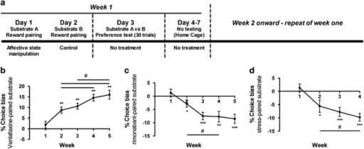Affective biases amplify with additional learning experiences. Utilizing a modified protocol (a), the effects of additional substrate–reinforcer pairing sessions were investigated. The effects of venlafaxine (b) treatment further amplified when the number of substrate–reinforcer pairing sessions was increased. The effects were significant from week 2 onward, consistent with the standard protocol (Figure 1a), and this increased further with each successive postdrug encounter with the reinforcer-paired substrate. Using the same procedure the prodepressant drug treatment rimonabant (c) and psychosocial stress manipulation (d) were shown to induce a negative bias that also amplified with each successive experience. Data shown as mean±SEM, n=15–16. Data analyzed using repeated measures ANOVA, *p<0.05, **p<0.01, ***p<0.001 vs theoretical mean of 0% choice bias, #p<0.05 paired t-test.
