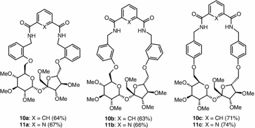 Macrocyclic diamides 10a–10c and 11a–11c
