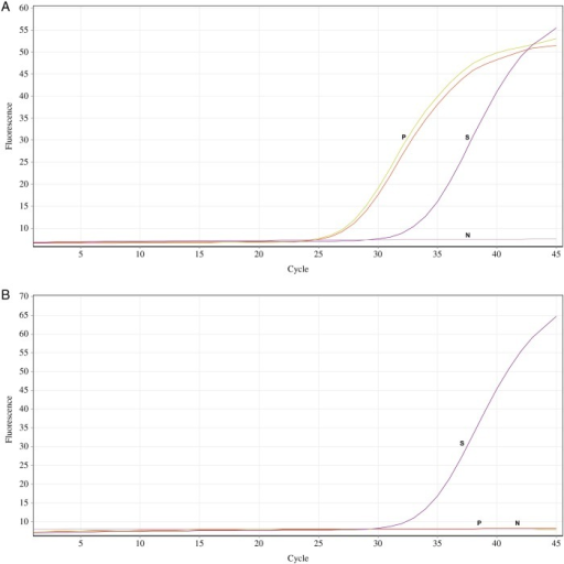 (A) Amplification curve of Trypanosoma cruzi before treatment. Cycle threshold: 23 for patient and 29 for standard. (B) Amplification curve of T cruzi after treatment. Cycle threshold: 28.9 for standard. Abbreviations: N, no template control (NTC); P, patient, duplicate samples; S, standard (4500 parasite equivalents/mL).