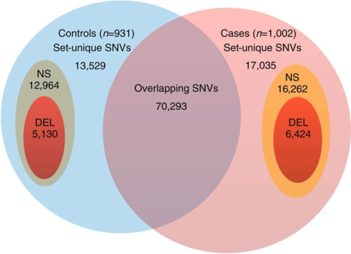 Set-unique SNVs.Diagram depicting the set-unique variants (not to scale, cases n=1,002, controls n=931). The set NS represents all variants that are scored by ISUB, and the set DEL includes only those variants that are predicted to be deleterious. In particular, the set DEL includes stop-altering and splice site variants.