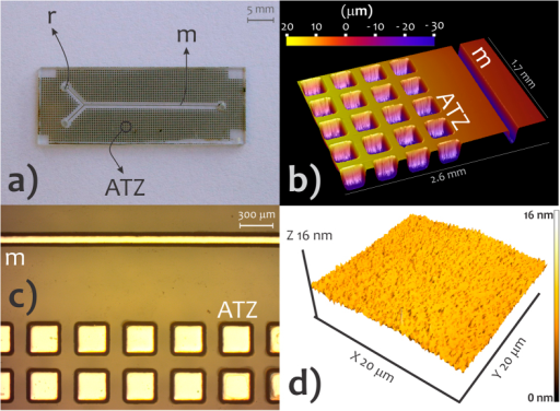 Microchannels, ATZs, and SU-8 surface morphology.Photo of the substrate incorporating channel and ATZs (a), profilometry image of microchannel and ATZs (b), photo by digital microscope showing the Al film-coated cavities (c), and AFM image of the SU-8 surface (d). m, microchannel; ATZ, air-trapping zone, and r, reservoir.