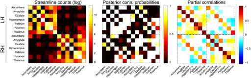 Subcortical connectivity for one subject using the data fusion model.From left to right: the empirical streamline log-counts, the mean posterior connection probability matrix and the mean posterior partial correlation matrix. Note the reduction in connectivity, in particular between the hemispheres, compared to Fig 7. The connections for the left hemisphere (LH) and the right hemisphere (RH) are separated by the dashed lines.