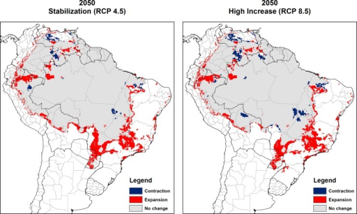 Consensus maps of predicted future climate suitability of Lutzomyia flaviscutellata.Left: Stabilization climate scenario (RCP4.5); right: High increase climate scenario (RCP8.5). Future expansion areas (red), future contraction (blue) and no change between current and future climate suitability (grey).
