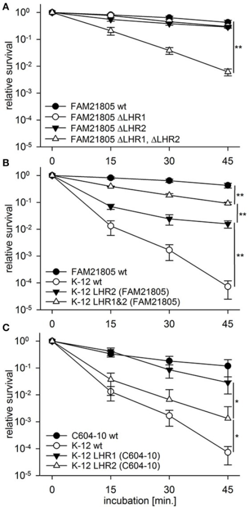 Heat resistance assays of E. coli wild-type strains, FAM21805 mutants, and K-12 MG1655 transconjugants. Relative survival compared to time point 0 of strains incubated at 55°C for 15, 30, and 45 min. (A) FAM21805 wild-type, -ΔLHR1, -ΔLHR2, and ΔLHR1ΔLHR2. (B) FAM21805 wild-type, K-12 MG1655 wild-type, and K-12 MG1655 transconjugants harboring LHR2 or both LHRs of FAM21805. (C) C604-10, K-12 MG1655 wild-type, and K-12 MG1655 transconjugants featuring LHR1 or LHR2 of C604-10. Error bars indicate standard deviations. Significances are indicated for the 45 min. time points based on one-tailed t-tests in (A,B), and Mann-Whitney rank sum tests in (C); *p < 0.05, **p < 0.01.