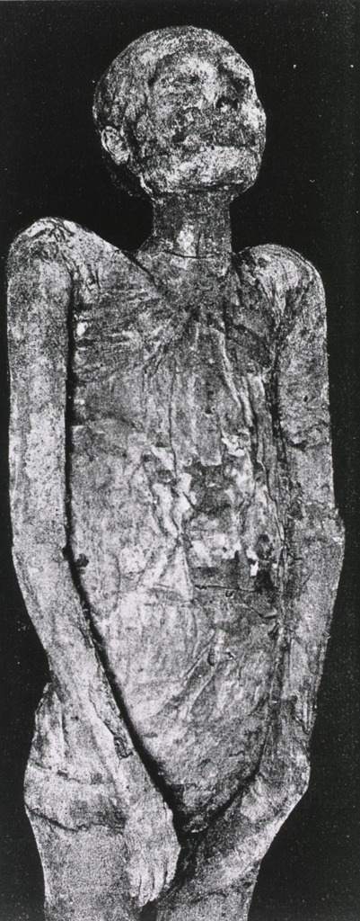 <p>The mummy of a Priest of Ammon (21st dynasty) after the removal of all the wrappings.</p>