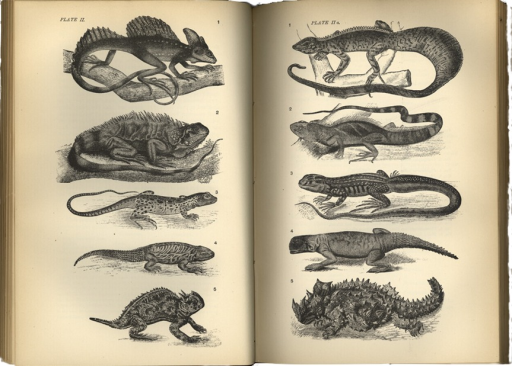 <p>Image of plates II and IIa, after p. 96, of 10 reptiles from Cope's The origin of the fittest.</p>