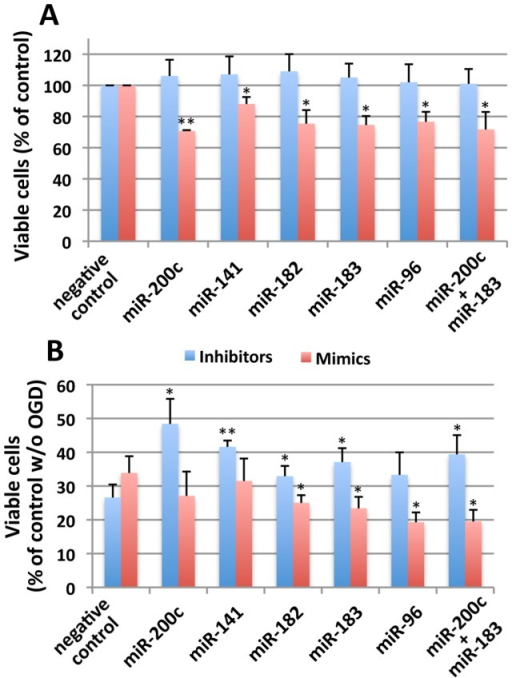 Effects of inhibitors and mimics for miR-200 family and miR-182 family miRNAs on OGD-induced cell death in SHSY5Y.(A) SHSY5Y cells were transfected with either inhibitors or mimics as indicated and 2days later the cell viability was measured by WST-1. Viability was expressed as percentage of negative control for either inhibitor or mimic transfected cells. (B) SHSY5Y cells transfected as mentioned above, and 2days later these cells were subjected to OGD (16 h), and viable cells were measured by WST-1. Viability was expressed as percentage of negative control cells (negative control inhibitor or negative control mimic transfected and not subjected to OGD). In both A and B, inhibitor transfected cells were shown in blue, and mimic transfected cells were shown in red. Data are shown as the mean±SD of three independent experiments. **p<0.01, *p<0.05 compared to control.