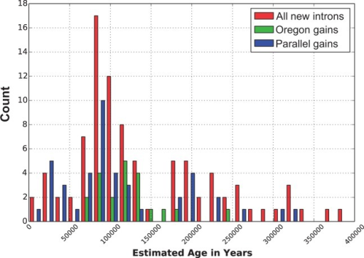 Estimated age distribution of newly gained introns categorized into three groups—all new introns, new introns found in Oregon populations only, and new introns resulting from parallel gains at homologous sites. This plot indicates that new intron-containing alleles range in estimated ages of 14,500–390,000 years, with a spike in new intron establishment between 52,000 and 122,000 years.