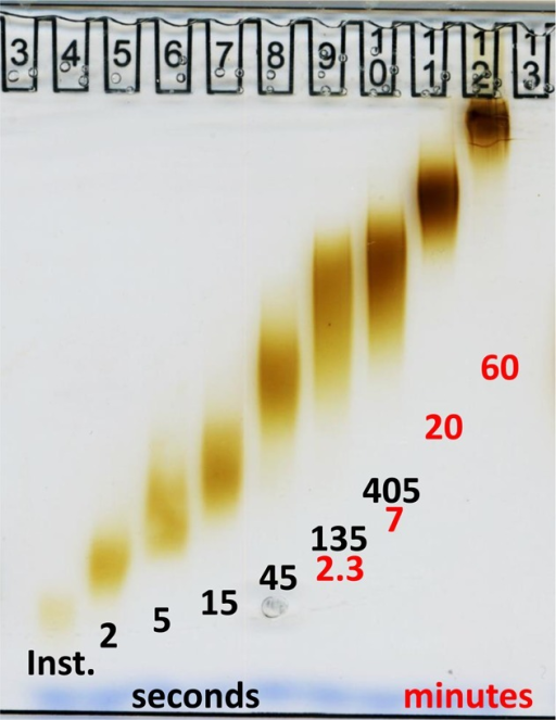 "Polyacrylamide gradient gel electrophoresisof oligoclusters formedafter different delay times between making the HAuCl4 alkalineand the addition of NaSCN. The delay times used in preparing the oligoclustersare listed in seconds and minutes in black and red, respectively.""Inst."" indicates that the NaSCN was added to the reactionmix at the same time as adding the borax (instantaneously). The samplesused for the electrophoresis were from stored preparations that hadbeen GSH-derivatized earlier, washed with water, and reconcentrated.Equal volumes of samples were loaded."