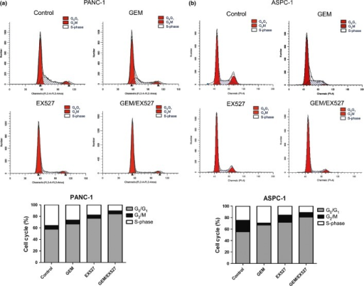 Effect of EX527 and (or) gemcitabine (GEM) on cell cycle distribution in pancreatic cancer cells. Cycle phase distributions of PANC-1 (a) and ASPC-1 (b) cells were analyzed by flow cytometry after staining with propidium iodide. Percentage of cells in each phase of the cell cycle (G0/G1, G2/M and S-phase) is indicated. The experiments were repeated twice with similar results.