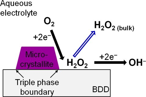 Schematic diagram showing possible outcomes of H2O2 during O2 reduction at the triple phase boundary.