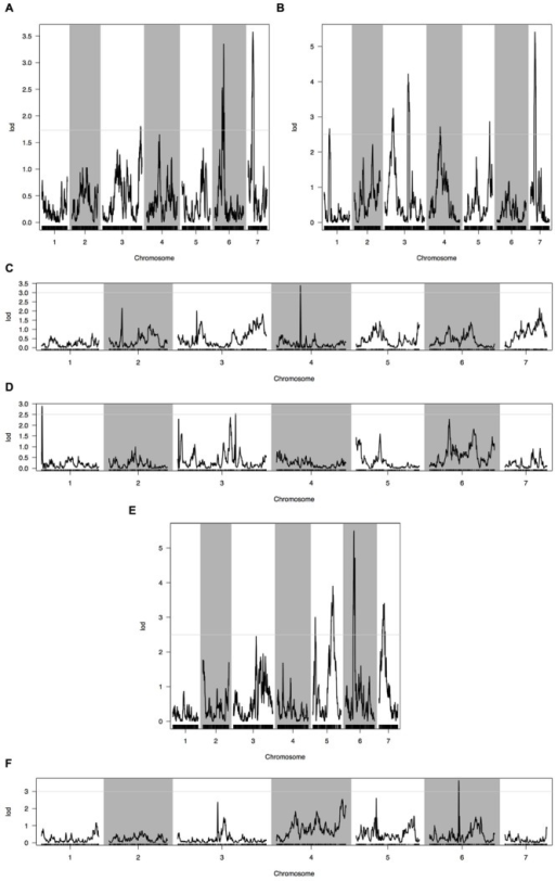 Quantitative trait loci (QTL) analysis with two fruit traits using the high-density genetic map. (A) QTL analysis of fruit length in 2013 autumn; (B) QTL analysis of fruit length in 2014 spring; (C) QTL analysis of fruit length in 2015 spring; (D) QTL analysis of fruit diameter in 2013 autumn; (E) QTL analysis of fruit diameter in 2014 spring; (F) QTL analysis of fruit diameter in 2015 spring. Horizontal line on the chart represents LOD threshold.