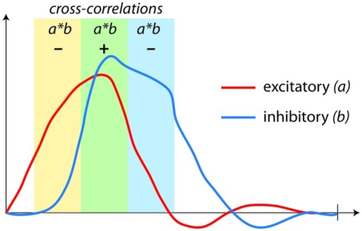 Correlations (coupling) used in fMRI connectivity analyses are not capable of assessing regulation. Here, a negative feedback loop with excitatory (a) and inhibitory (b) components produces time-series that appear to be either positively or negatively correlated, depending upon the stage of the dynamic process being assessed.