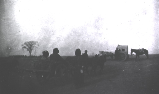 <p>A back view of an improvised sick convoy using a Chinese cart.</p>