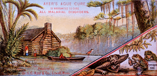 <p>Malarial disorders, attributed to a &quot;miasmatic poison,&quot; can be cured through proper use of Ayer's Ague Cure.  Visual motif:  Swamp scene showing log cabin, a boat, and two frogs offering Ayer's Ague Cure to an alligator.</p>