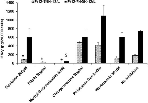 Effect of endocytic inhibitors on gene expression of P/G/L nanoparticles. Interferon (IFN)-γ expression was measured at 72 hours in cells incubated with P/G/L nanoparticles in the presence of endocytic inhibitors. In the P/12-7NH-12/L-treated cells, gene expression in cells pre-treated with caveolae-mediated uptake inhibitors (genistein, filipin) was significantly lower than the untreated (no inhibitors) cells, whereas gene expression was significantly higher on inhibiting clathrin-mediated uptake (chlorpromazine). For the P/12-7NGK-12/L nanoparticles, gene expression was significantly lower in presence of methyl-β-cyclodextrin (clathrin- and caveolae-mediated uptake inhibitor). * represents significant difference, p < 0.05, compared to 'No inhibitors' control cells treated with P/12-7NH-12/L nanoparticles (No inhibitors black bar). $ represents significant difference, p < 0.05, compared to 'No inhibitors' control cells treated with P/12-7NGK-12/L nanoparticles (No inhibitors dashed-line bar).