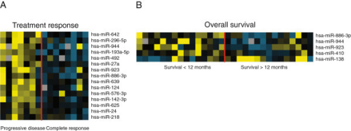 Heatmaps of miRNA expression patterns. miRNA expression is depicted according to (A) treatment response and (B) overall survival. Yellow; upregulation of the gene, blue; downregulation, black; median expression, grey; missing value.