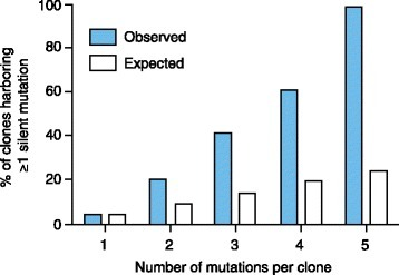 Silent mutations increase with the total number of mutations per cell clone. The graph represents the total number of silent mutations per clone (x-axis) and the percentage of clones with at least one silent mutation (blue bars). White bars represent the expected percentage of mutations. Adapted with permission from Khorashad et al. [52].