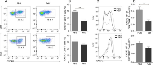 The Expression of CXCR3 on Splenic CD4+ T Cells is Decreased by Parenteral Iron Supplementation.Representative flow cytometric dot plots of CXCR3+ CD4+ and CD8+ T cells (a) and the percentage of CXCR3+ cells after gating on CD4+ or CD8+ T cells (b). Representative flow cytometric histograms of CXCR3 (c) and the MFI of CXCR3 (d) after gating on CD4+CD44hi or CD8+CD44hi T cells. All experiments were performed on day 7 post-infection. The numbers shown on the dot plots indicate the mean percentage of cells inside the gate ± S.E.M. n = 13 for all groups. The average of two individual experiments is shown. FeD = iron dextran, PBS = control. Statistically significant differences, shown by asterisks (** P < 0.01 and *** P < 0.001), were determined by unpaired Student's t-test.
