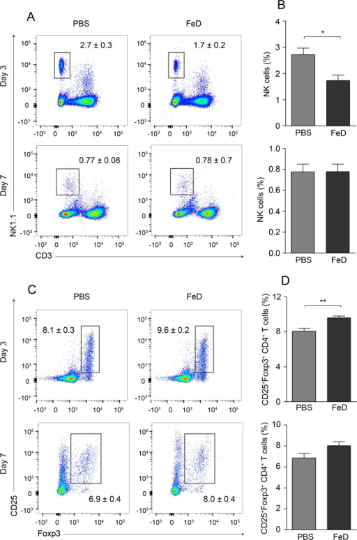 FeD Mice have Modulated Frequencies of Splenic NK Cells and Tregs Early During the Infection.Representative flow cytometric dot plots of NK cells (a) and the percentage of NK cells (b) on day 3 and day 7 post-infection. Representative flow cytometric dot plots of Tregs (c) and the percentage of Tregs after gating on CD4+ T cells (d) on day 3 and day 7 post-infection. The numbers shown on the dot plots indicate the mean percentage of cells inside the gate ± S.E.M. On day 3 post-infection, n = 6 for control mice and n = 5 for FeD mice, except for Tregs, where n = 5 for the control mice. On day 7 post-infection, n = 6 for control mice and n = 6 for FeD mice. FeD = iron dextran, PBS = control. Statistically significant differences, shown by asterisks (* P < 0.05 ** P < 0.01), were determined by unpaired Student's t-test.