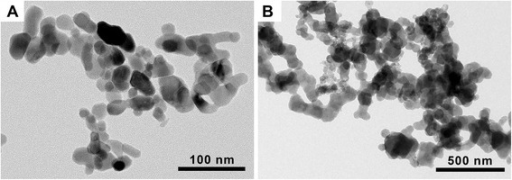 Transmission electron microscopy (TEM) image of (A) cobalt oxide (Co3O4) and (B) cobalt monoxide (CoO) nanoparticles (NPs). Both Co3O4 and CoO NPs showed spherical shape without porous structure