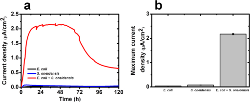 Electrical output of MFCs inoculated with mono- and co-cultures of E. coli and S. oneidensis microbial strains.(a) Current density generated as a function of time. (b) Maximum current density (average ± standard deviation). Data represent the average of triplicates.