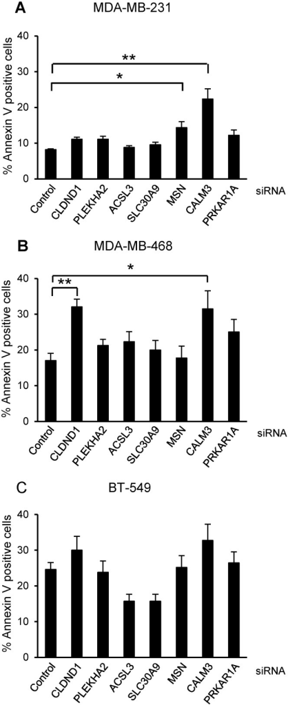 Effects of silencing CLDND1, PLEKHA2, ACSL3, SLC30A9, MSN, CALM3 and PRKAR1A on breast cancer cell death.MDA-MB-231 (A), MDA-MB-468 (B) and BT-549 (C) breast cancer cells were transfected with siRNA oligonucleotides targeting CLDND1, PLEKHA2, ACSL3, SLC30A9, MSN, CALM3, PRKAR1A or with a control siRNA for 72 h. Cells were subjected to Annexin V-APC staining and flow cytometry analysis. Data (mean ± S.E.M., n = 3) represent percent Annexin V-positive cells related to control conditions. Asterisks indicate statistically significant differences (*, p<0.05; **, p<0.01) compared with control cells.