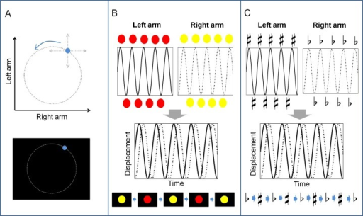 Illustration of different augmented feedback.(A) Lissajous (continuous visuospatial) feedback. Note that the dotted circle configuration is for clarity of illustration and was not seen by the participant. (B) Color (discrete visual rhythmic) feedback. (C) Tone (discrete auditory rhythmic) feedback.