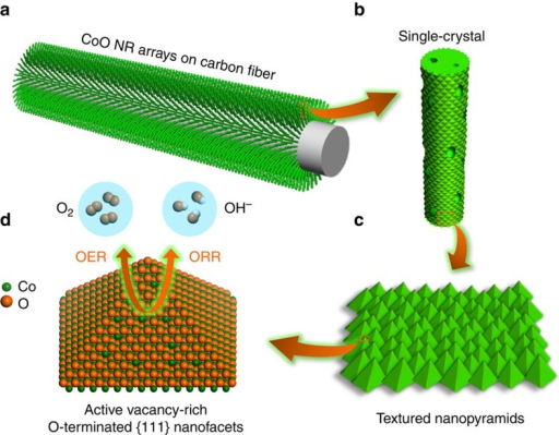 Schematic illustration of engineering the surface of SC CoO NRs.(a) SC CoO NRs fabricated directly on carbon fibre substrate. (b) Numerous nanopores present on the surface and across SC NRs. (c) The surface of SC CoO NRs covered with textured nanopyramids. (d) The dominant exposed facets of nanopyramids are electrochemically active vacancy-rich O-terminated {111} facets.