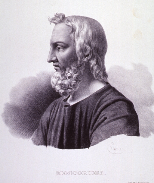 <p>Head and shoulders, left profile, wearing robe.</p>