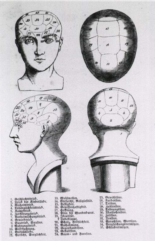 <p>Front and side view of bust with phrenological sections identified.</p>