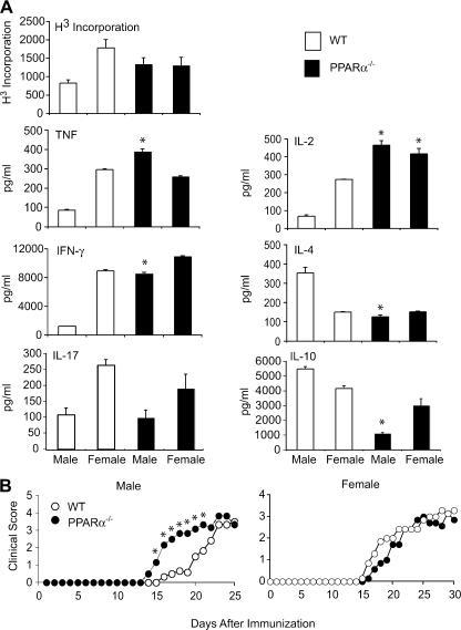 T cells from male PPARα−/− mice were hyperresponsive to TCR stimulation and caused an earlier onset of EAE. (A) CD3+ T cells from male and female SV.129 WT or PPARα−/− mice were stimulated with 1 μg/ml anti-CD3 and anti-CD28. The proliferation rate was determined by [3H]thymidine incorporation (cpms), and cytokine production was measured in culture supernatants by ELISA at 48 (IL-2), 72 (IFN-γ, TNF, and IL-17), and 120 h (IL-10 and IL-4) after stimulation. Values are means ± SEM of triplicate culture wells. * indicates a significant difference (P < 0.05) from WT counterpart. Results are representative of at least three independent experiments. (B) Naive CD4+ T cells from male and female WT and PPARα−/− mice were adoptively transferred into syngeneic male or female RAG2−/− mice by intravenous injection, and EAE was induced in recipient mice 2 d later via immunization with MOG p35-55 in CFA. Mean clinical scores of mice in the different groups at various times after immunization are shown. Results are representative of two independent experiments. * indicates a significant difference from WT (P < 0.05).