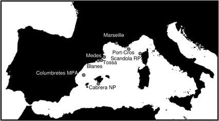 The western Mediterranean Sea, showing the surveyed localities of Ircinia fasciculata.