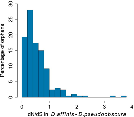 Distribution of dN/dS for orphan genes.Most orphans have dN/dS lower than 1, consistent with the hypothesis of purifying selections acting on these genes.DOI:http://dx.doi.org/10.7554/eLife.01311.004
