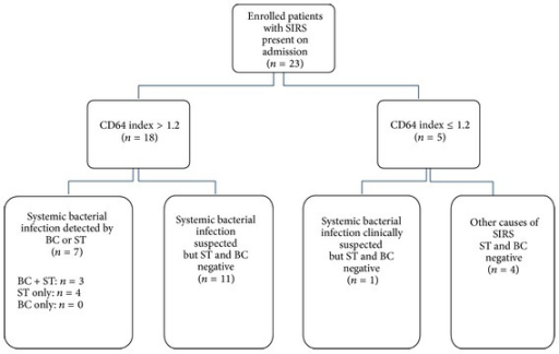 Flow diagram of patients enrolled in the study and results from CD64 index, BC, and ST (SIRS = systemic inflammatory response syndrome, ST = SepsiTest, and BC = blood culture).