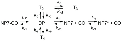 Minimal reaction scheme for the observed rebinding kinetics.Reaction intermediates T2, T3 and T4 denote docking sites inside the protein.