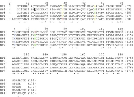 Amino acid sequence alignment ofR. prolixus NP1 (Swiss-Port entry Q26239), NP2 (Swiss-Port entry Q26241), NP3 (Swiss-Port entry Q94733), NP4 (Swiss-Port entry Q94734), and NP7 (Swiss-Prot entry Q6PQK2)(1).The total sequence identity among all five protein sequences amount to 33% (indicated by '*'). The proximal His is indicated by '#'. An initial Met residue (in grey) results in case of the recombinantly expressed proteins of NP1, NP2, NP3, and NP7 is not present in the mature proteinsin vivo (2, 3). Residues of relevance to this study are highlighted in color.