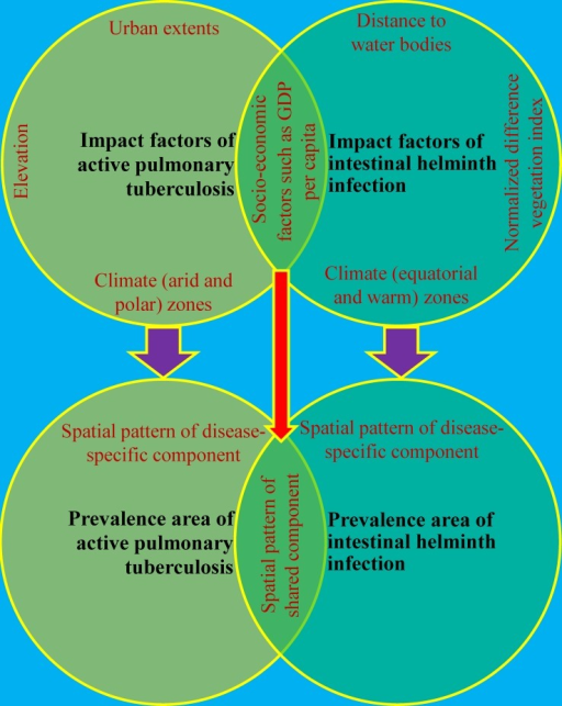 Summarization of relationships between impact factors and spatial patterns of prevalence individually and collectively associated with active pulmonary tuberculosis and intestinal helminth infection in P. R. China.