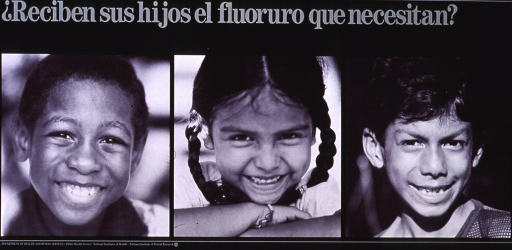 <p>Black poster with pale green lettering.  Title in upper left corner.  Visual image consists of reproductions of three b&amp;w photos, each showing a different child.  All of the children are smiling.  Publisher information at bottom of poster.</p>