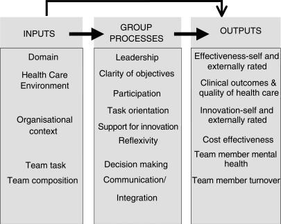 input process and output model of team effectiveness open i
