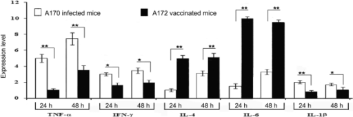 Anti-inflammatory activity of the A172 vaccine.A172 modulates transcription of the genes coding for pro-inflammatory cytokines (TNF-α, INF-γ and IL-1β) and induces transcription of the genes coding for anti-inflammatory cytokines (Il-4 and Il-6).