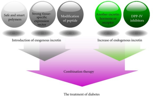 Potentiation therapy based on incretin for the treatment of diabetes.