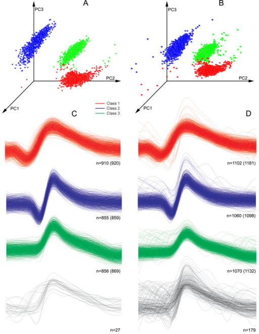 Result of classification of the simulated dataset from Example 2, noise level 0.15.A - The projection of the first three PCs of the dataset not containing overlapping spikes; B - the same, but with overlapped spikes. Three dense clusters are shown in both cases. C and D - original spike shapes of detected clusters in the datasets without and with overlapping spikes, respectively. Different spike events are shown in different colours, according to the outcome of the clustering algorithm. The number of correctly identified spikes is indicated. Values in brackets indicate the total number of spikes in each class. The spike shape shown in the lower part of the figure has been incorrectly classified and therefore marked in black.